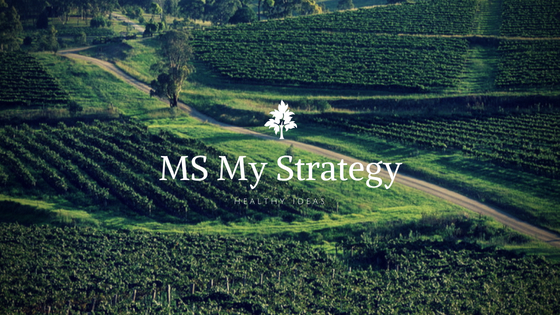 MS My Strategy - nature
