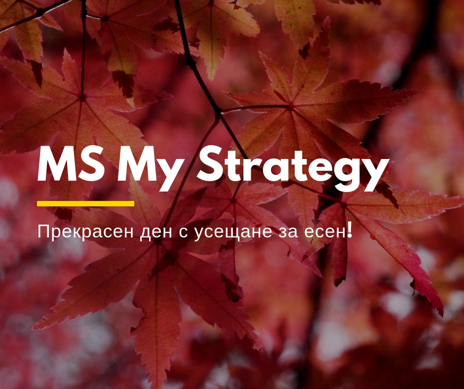 MS My Strategy6